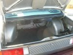 C1 trunk