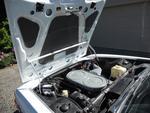 Chamonix CS engine L